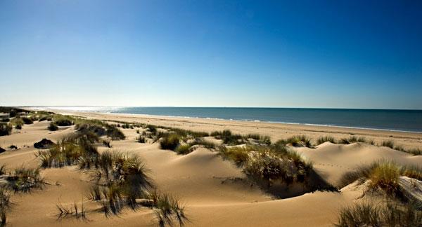 plage-sauvage-naturel-parc-donana-huelva-andalousie-nature