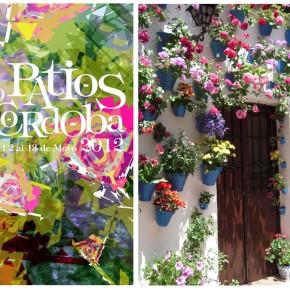 Le Festival des 'Patios' à Cordoue