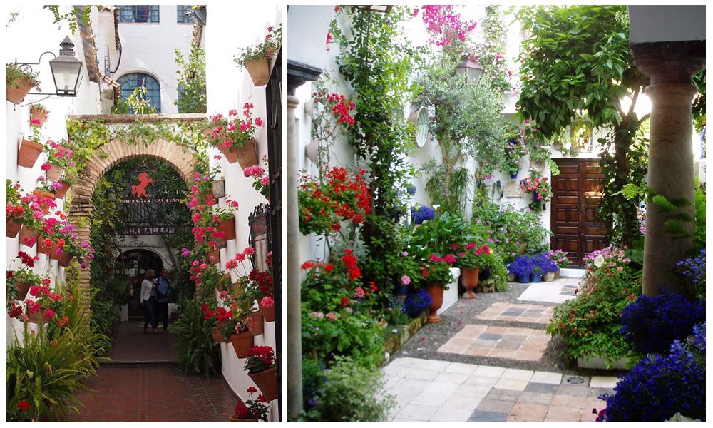 Des entrées donnant sur la rue remplis de plantes - Maison cordouane
